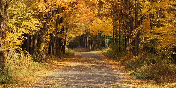 Fall events - Carlyle, IL